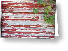 Old Red Barn With Peeling Paint And Vines Greeting Card