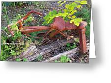 Old Rusty Bike In The Weeds 2 Greeting Card