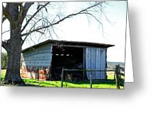 Old Shed 18 Greeting Card