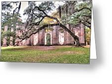 Old Sheldon Church - Bending Oak Greeting Card
