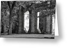 Old Sheldon Church Side View Greeting Card