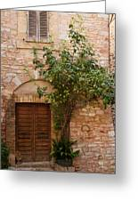 Old Stone House With Plants  Greeting Card