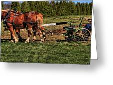 Old Time Horse Plowing Greeting Card