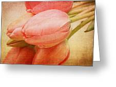 Old Time Tulips Greeting Card