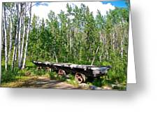 Old Tramway In Canyon City  Miles Canyon Trail Near Whitehorse-yk Greeting Card