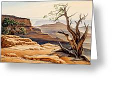 Old Tree At The Canyon Greeting Card