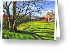 Old Tree In The Morning Of Early Spring Greeting Card