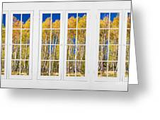 Old Triple16 Pane White Window Colorful Autumn Aspen Forest View Greeting Card
