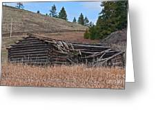 Old Turn Of The Century Log Cabin Homestead Art Prints Greeting Card