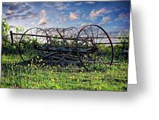 Old Weathered Plow Greeting Card