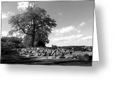Old Woman Creek - Black And White Greeting Card
