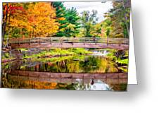 Ole Bull State Park Paint Greeting Card