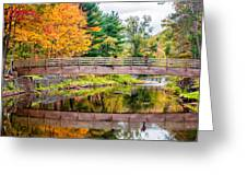 Ole Bull State Park Greeting Card