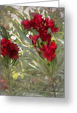 Oleander Blooms - A Touch Of Red Greeting Card