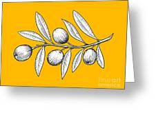 Olive Branch Engraving Style Vector Greeting Card