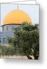 Olive Tree Dome Greeting Card
