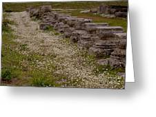 Olympia Ruins And Wild Flowers   #9678 Greeting Card