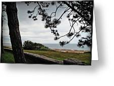 Omaha Beach Under Trees Greeting Card