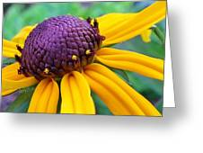 On A Warm Summer Day Greeting Card