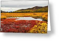 On Belanger Pass Road Greeting Card