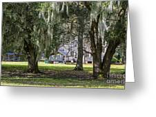 On Destrehan Plantation Greeting Card