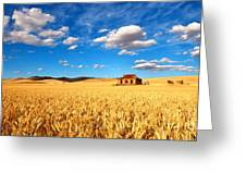 On Golden Fields Greeting Card