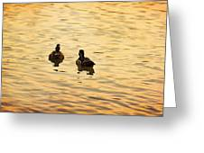 On Golden Pond Ducks Greeting Card