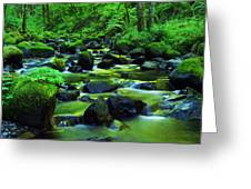 On Golden Waters  Greeting Card