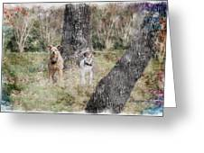 On Guard - Featured In Comfortable Art Group Greeting Card