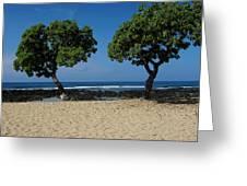 On Hawaii's The Big Island Greeting Card