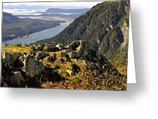 On Mount Roberts Greeting Card