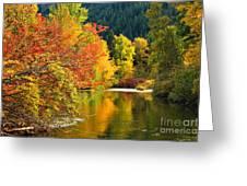 On Nason Creek Greeting Card