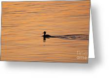 On Painted Waters Greeting Card