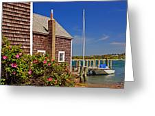 On The Cape Greeting Card by Joann Vitali