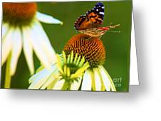 On The Edge Of Glory Greeting Card