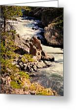 On The Firehole Greeting Card