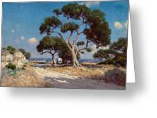 On The Old Blanco Road Southwest Texas Greeting Card
