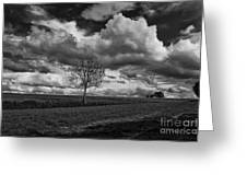 On The Plateau Greeting Card