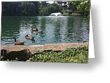 On The Pond Greeting Card