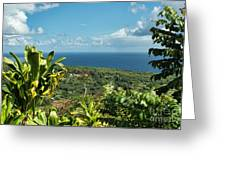 on the road to Hana Greeting Card
