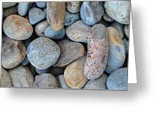 On The Rocks Greeting Card
