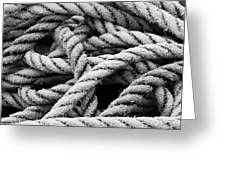 On The Ropes 2 Greeting Card
