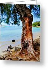 On The Shore 1. Mauritius Greeting Card