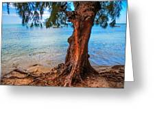 On The Shore. Mauritius Greeting Card