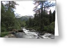 On The Shore Of A Mountain River With Mountain View Greeting Card