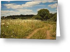 On The Summer Meadow II. Russia Greeting Card