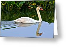 On The Swanny River Greeting Card
