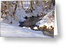 On The Thaw Greeting Card