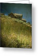 On The Top Of Grassy Hill Greeting Card