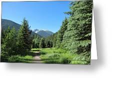 On The Trail Around Lightning Lake Greeting Card